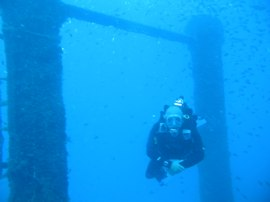 Swimming through the kingposts of the Kalais near Las Palmas