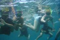 A group of young snorklers explore the Marine Reserve