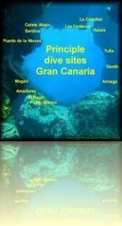 Gran Canaria's Tauchplätze - wohin und was gibt es zu sehen