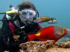 En la Reserva Marina del Cabrón podrás estar muy cerca y poder ver con detalle bajo el agua a criaturas como viejas, pulpos ,sepias…