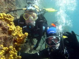 from our diving centre in Gran Canaria, explore the marine reserve with your buddy and a guide