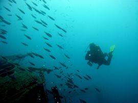 A Diver hangs in the current next to the wreck of the Arona in Gran Canaria