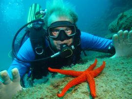 The open waters of the marine reserve are full of colourful creatures such as this starfish