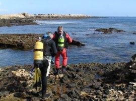 La Reserva Marina de Arinaga para submarinismo gran canaria