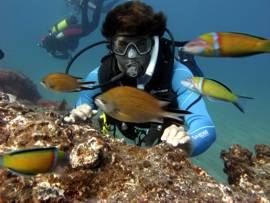 get close to the marine life on your dives