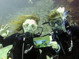 You can take all the PADI Courses in the Canary Islands